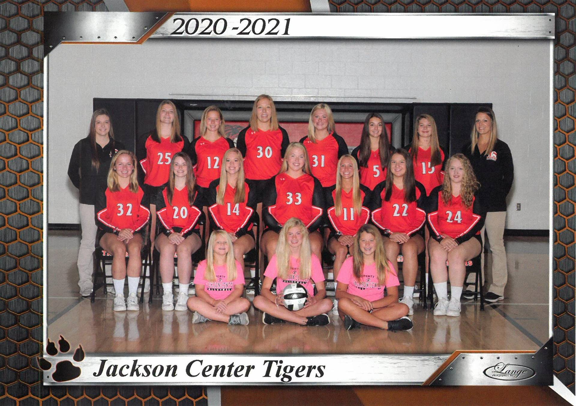 Vasrsity volleyball team