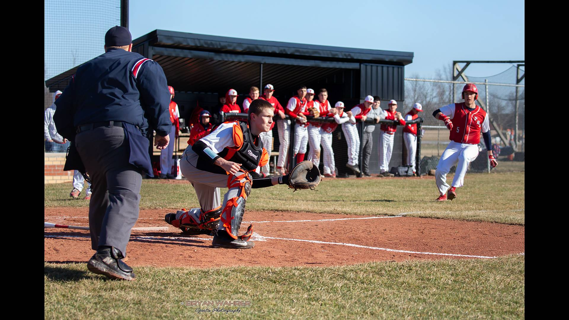 Baseball team in dugout with a play at the plate