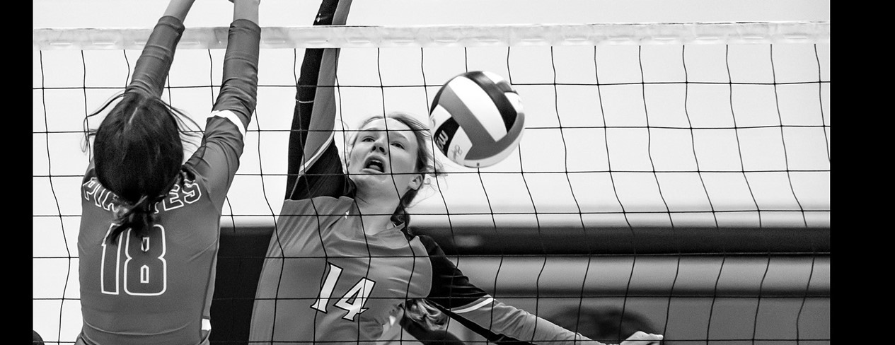 Volleyball at the Net